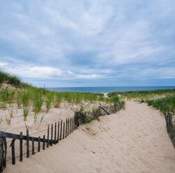 Fence and path through sand dunes